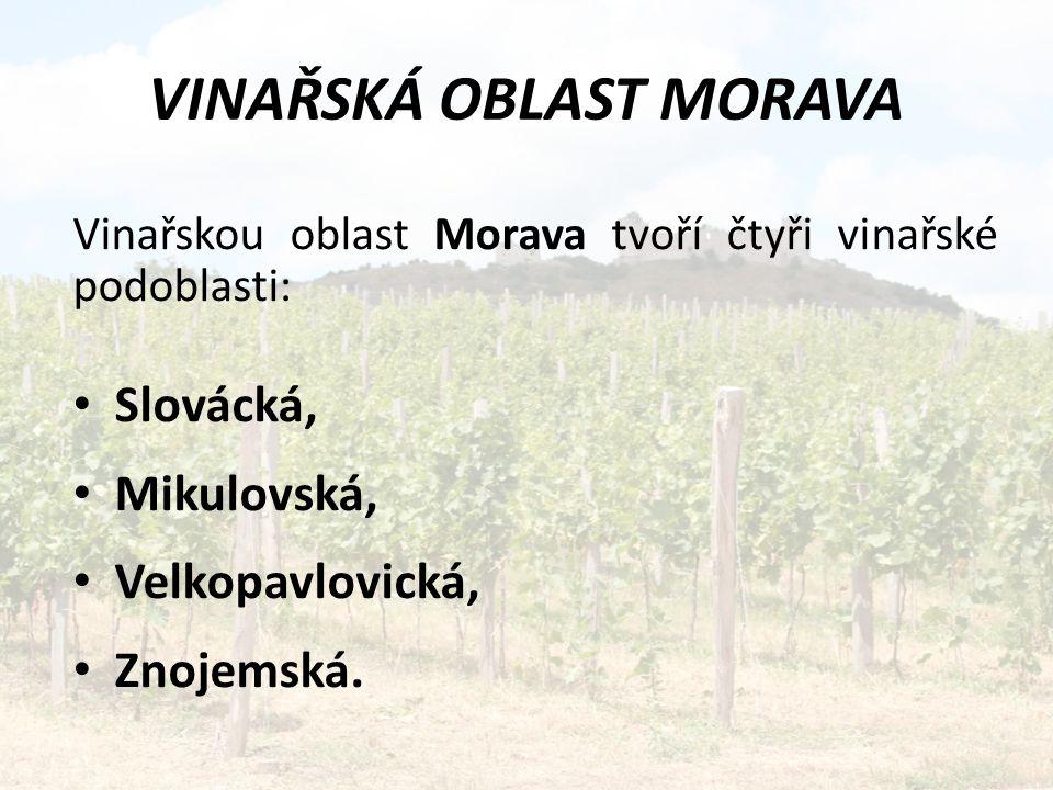 VINAŘSKÁ OBLAST MORAVA
