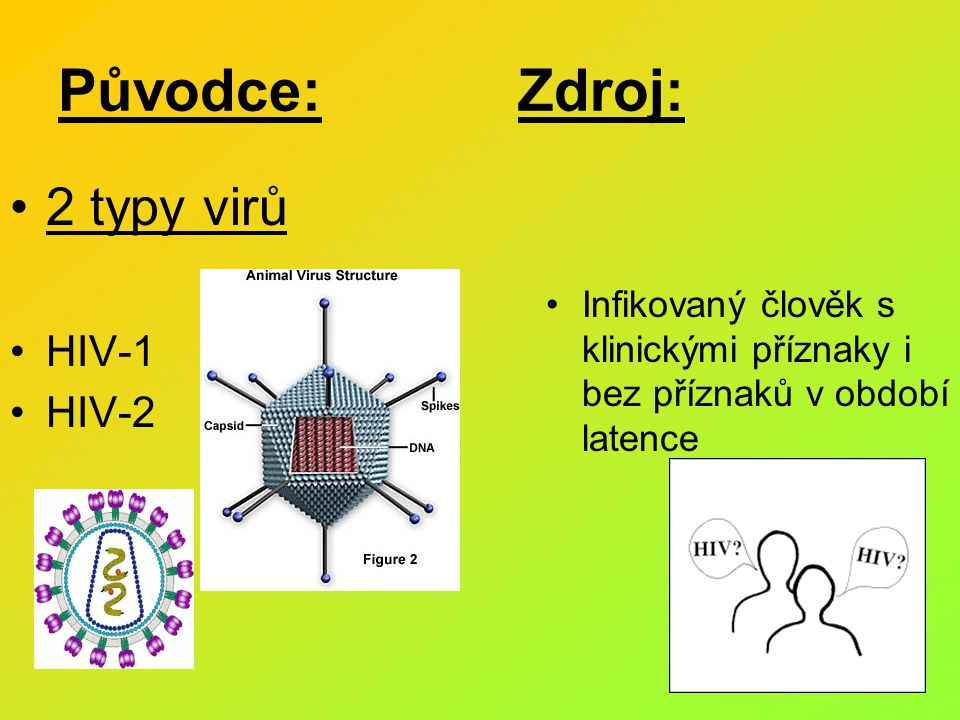 Původce: Zdroj: 2 typy virů HIV-1 HIV-2