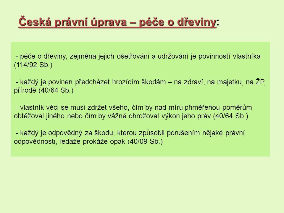 Česká právní úprava – péče o dřeviny: