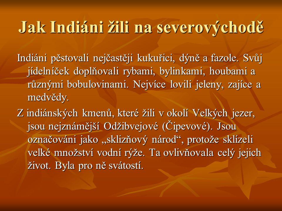Jak Indiáni žili na severovýchodě