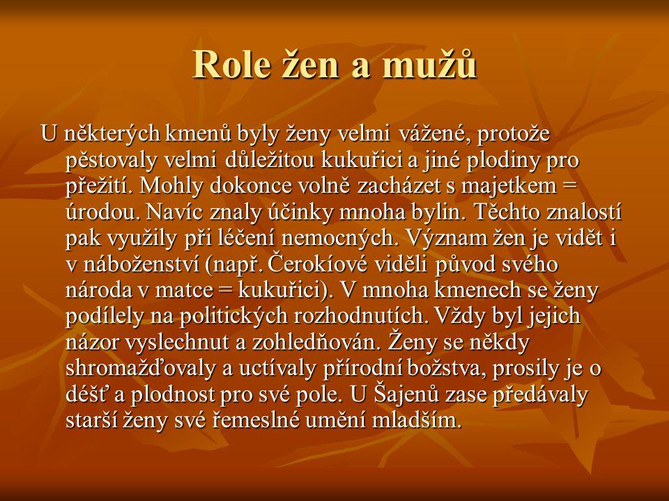 Role žen a mužů