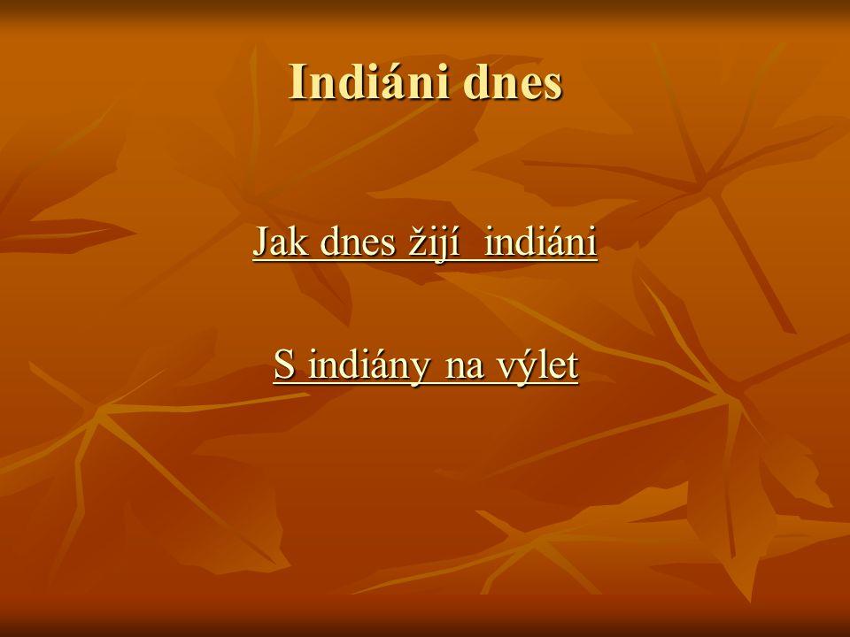 Indiáni dnes Jak dnes žijí indiáni S indiány na výlet