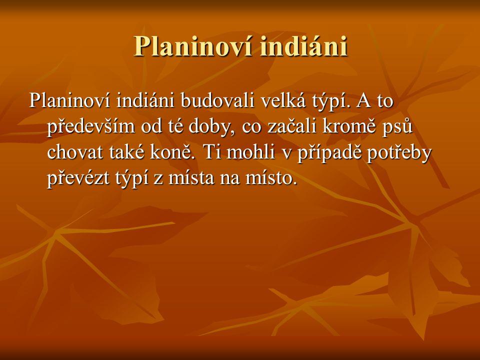 Planinoví indiáni