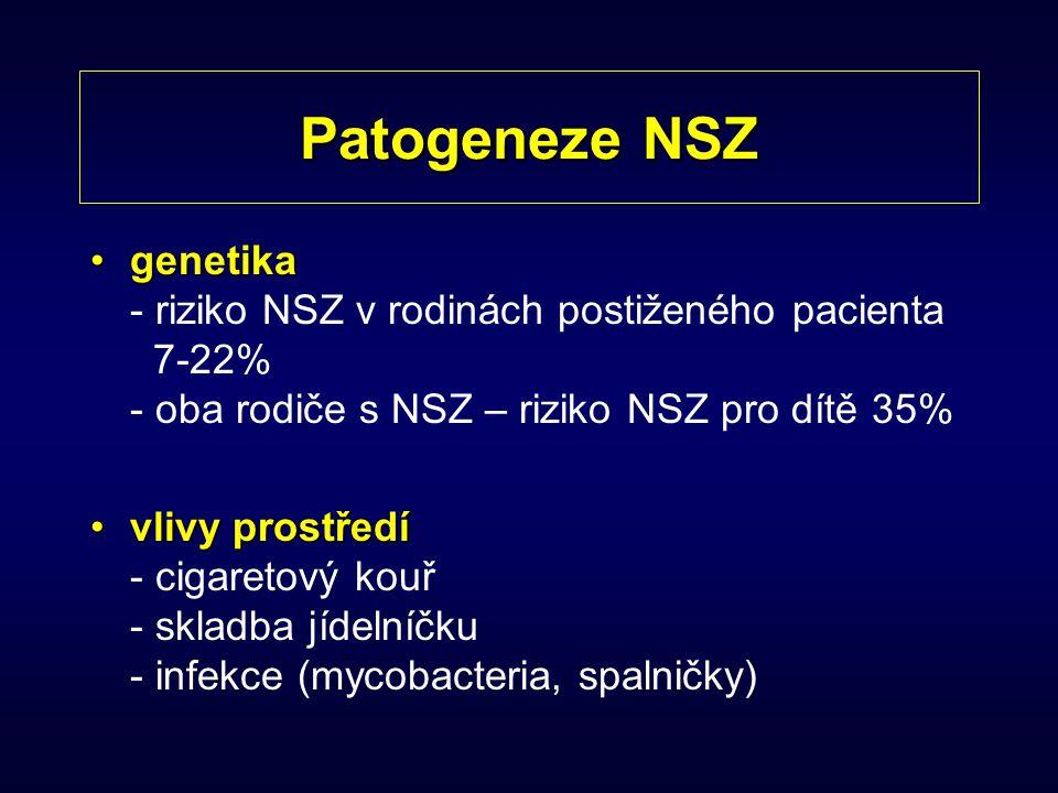 Patogeneze NSZ genetika - riziko NSZ v rodinách postiženého pacienta 7-22% - oba rodiče s NSZ – riziko NSZ pro dítě 35%