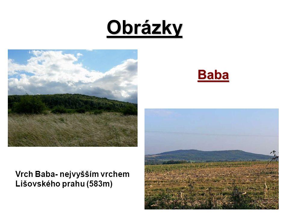 Obrázky Baba Vrch Baba- nejvyšším vrchem Lišovského prahu (583m)