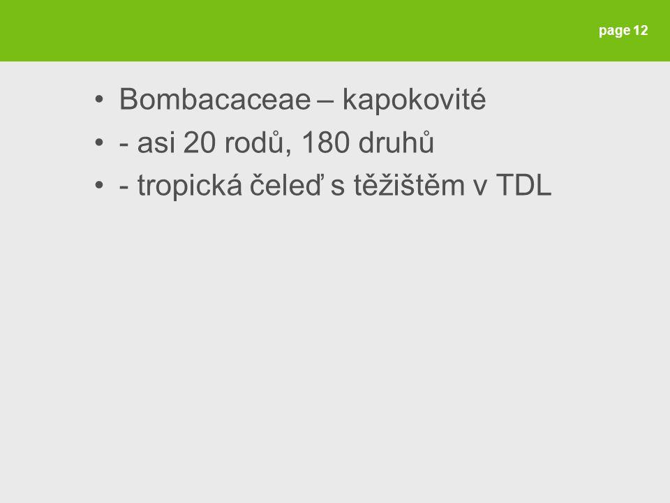 Bombacaceae – kapokovité