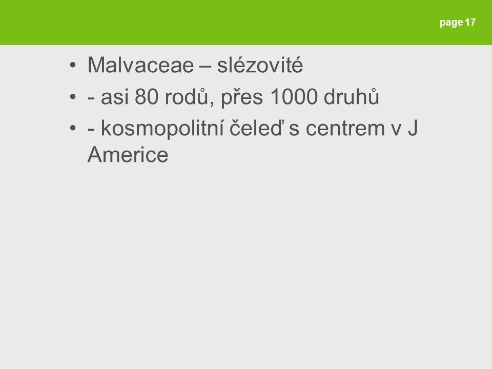 Malvaceae – slézovité - asi 80 rodů, přes 1000 druhů - kosmopolitní čeleď s centrem v J Americe