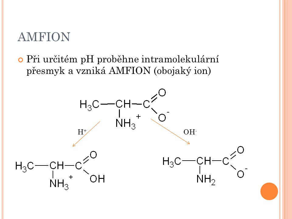 AMFION Při určitém pH proběhne intramolekulární přesmyk a vzniká AMFION (obojaký ion) H+ OH-