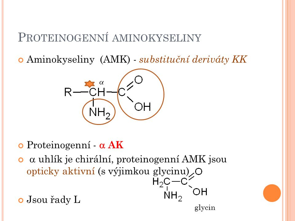 Proteinogenní aminokyseliny