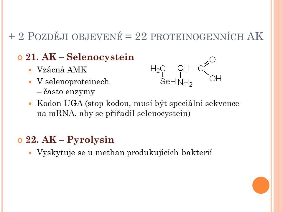 + 2 Později objevené = 22 proteinogenních AK