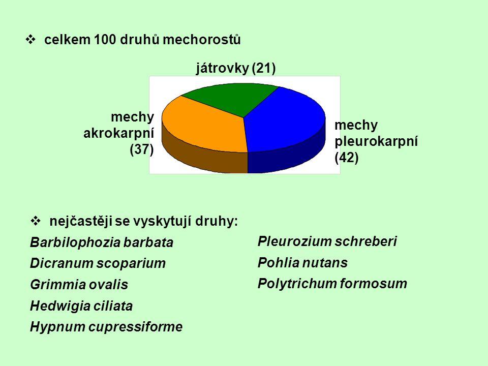 celkem 100 druhů mechorostů