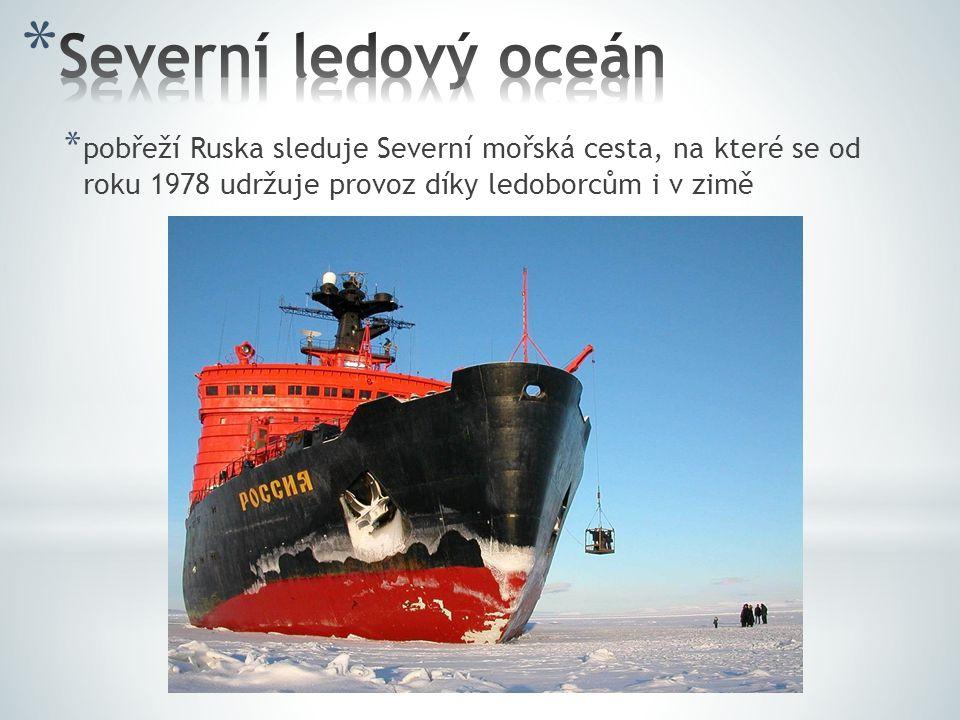 Severní ledový oceán pobřeží Ruska sleduje Severní mořská cesta, na které se od roku 1978 udržuje provoz díky ledoborcům i v zimě.