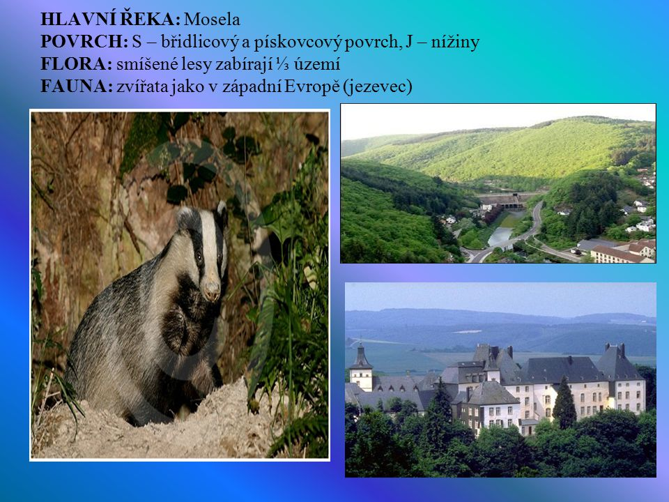 HLAVNÍ ŘEKA: Mosela POVRCH: S – břidlicový a pískovcový povrch, J – nížiny FLORA: smíšené lesy zabírají ⅓ území FAUNA: zvířata jako v západní Evropě (jezevec)