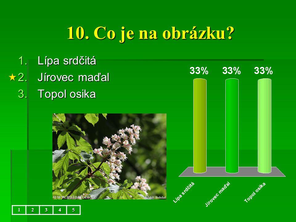 10. Co je na obrázku Lípa srdčitá Jírovec maďal Topol osika 1 2 3 4 5