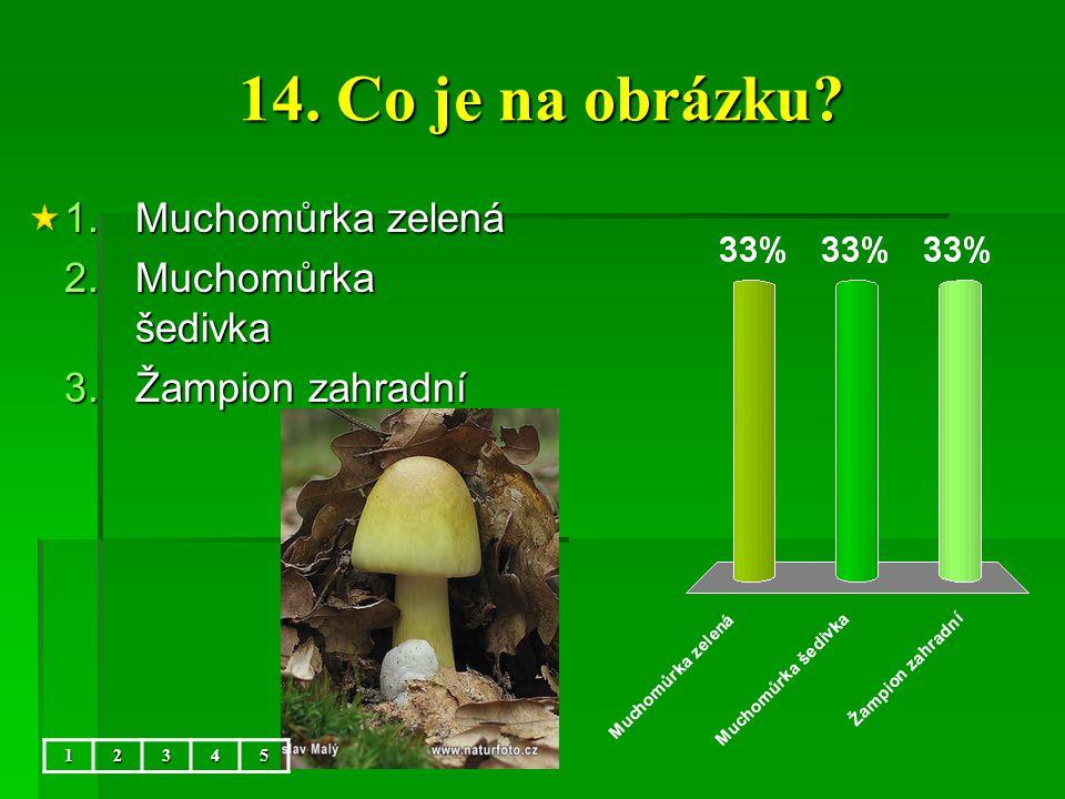 14. Co je na obrázku Muchomůrka zelená Muchomůrka šedivka