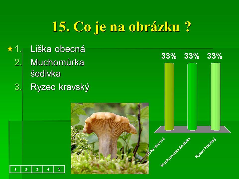 15. Co je na obrázku Liška obecná Muchomůrka šedivka Ryzec kravský 1