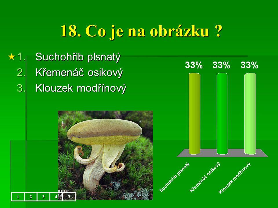18. Co je na obrázku Suchohřib plsnatý Křemenáč osikový