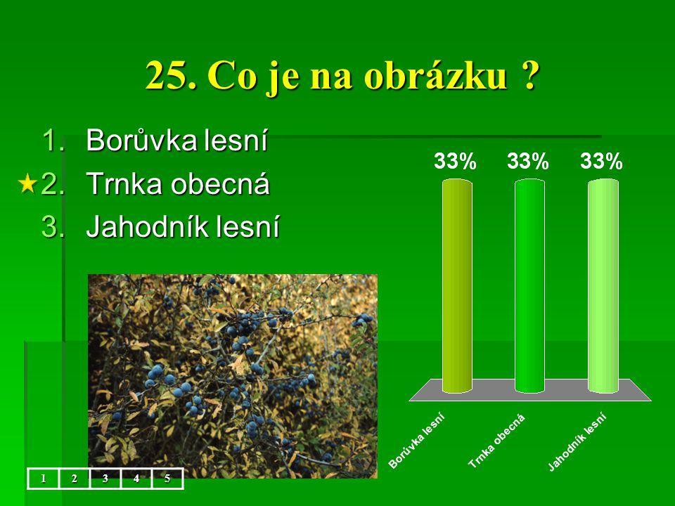 25. Co je na obrázku Borůvka lesní Trnka obecná Jahodník lesní 1 2 3