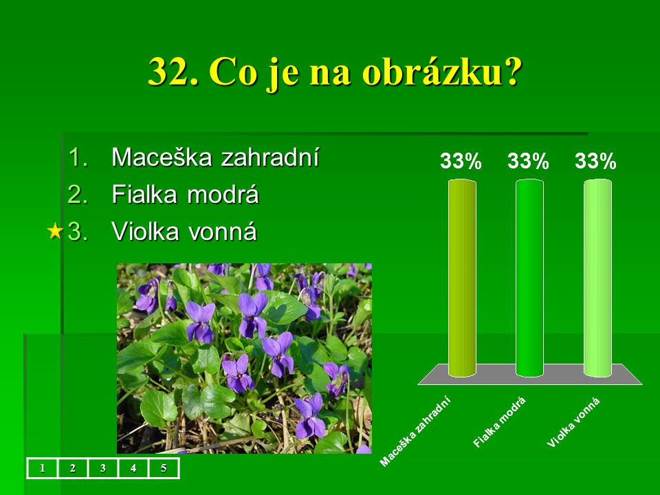 32. Co je na obrázku Maceška zahradní Fialka modrá Violka vonná 1 2 3