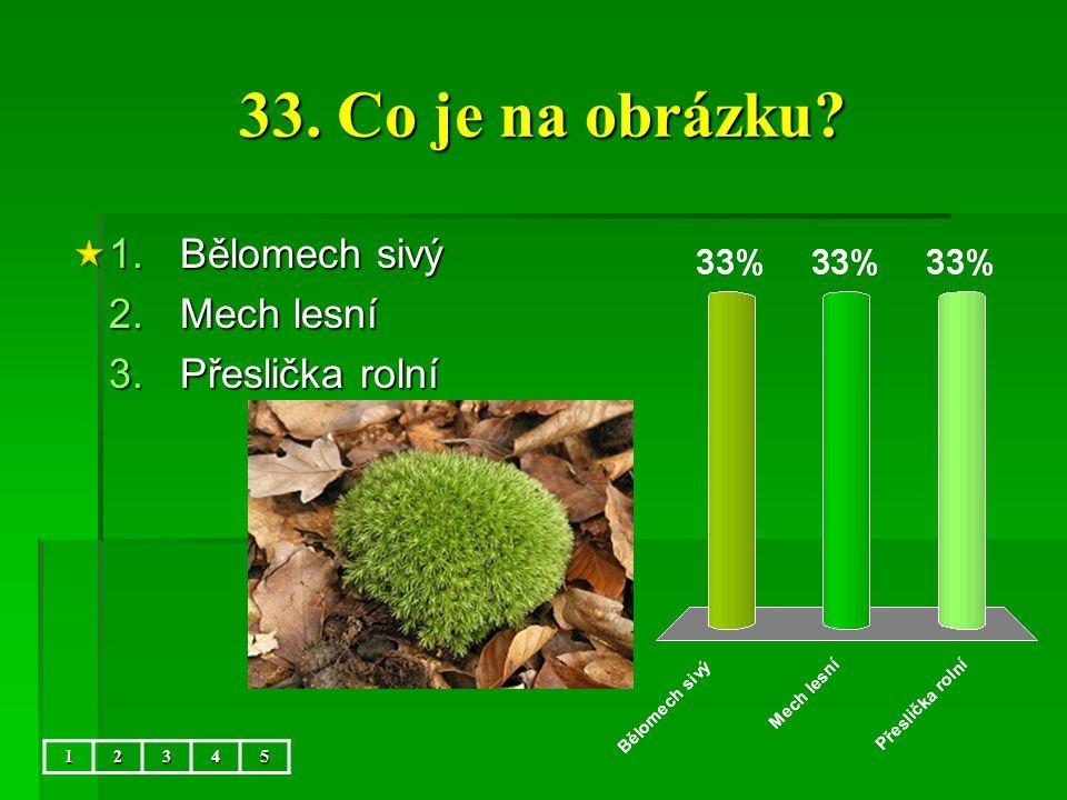 33. Co je na obrázku Bělomech sivý Mech lesní Přeslička rolní 1 2 3 4