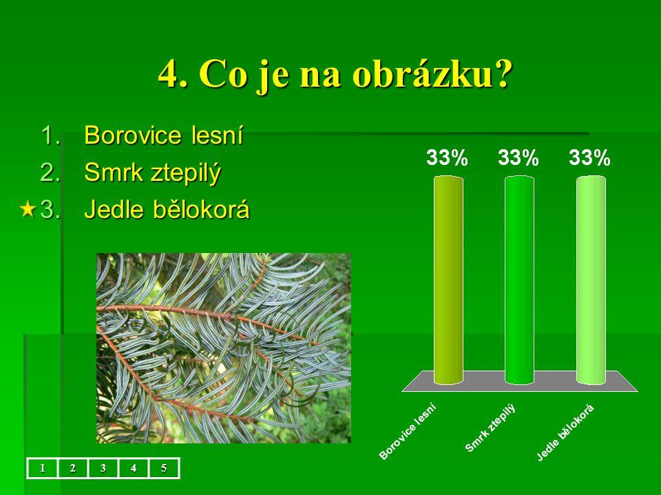 4. Co je na obrázku Borovice lesní Smrk ztepilý Jedle bělokorá 1 2 3
