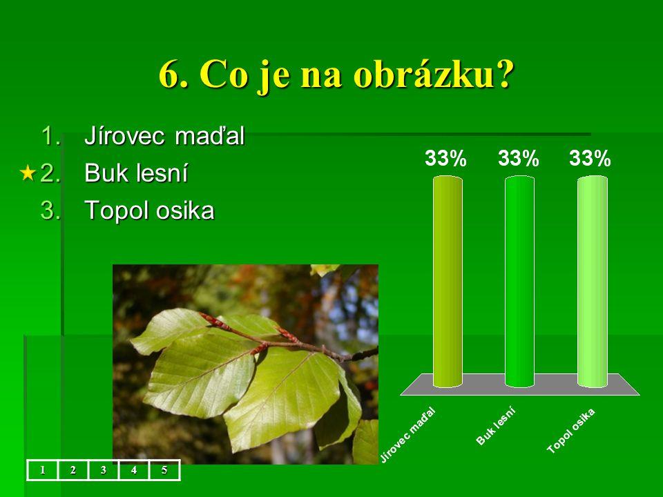 6. Co je na obrázku 5 Jírovec maďal Buk lesní Topol osika 1 2 3 4 5