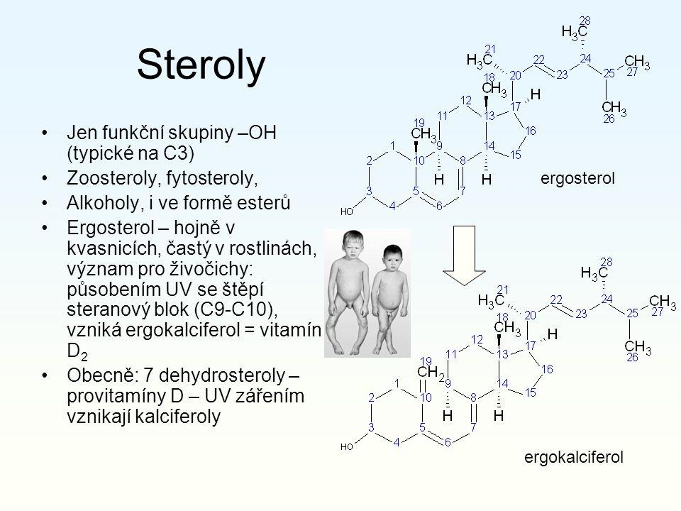 Steroly Jen funkční skupiny –OH (typické na C3)