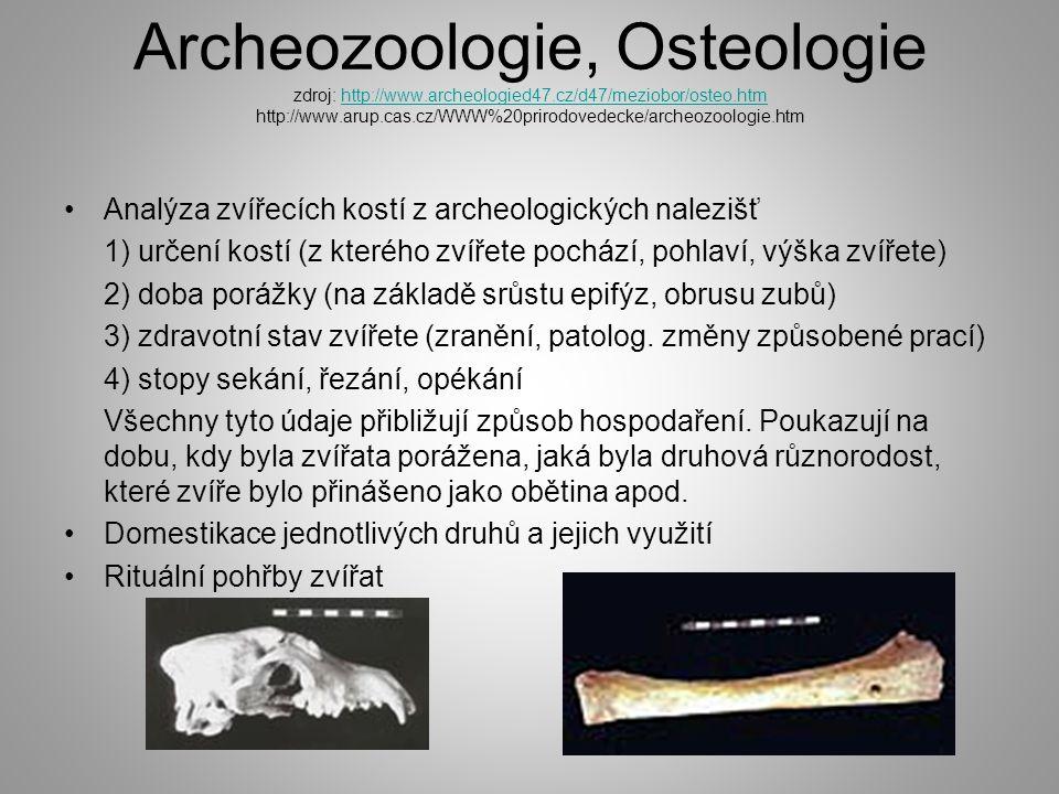 Archeozoologie, Osteologie zdroj: http://www. archeologied47