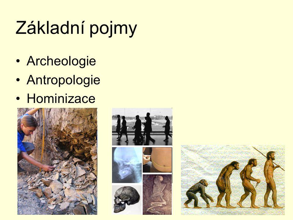 Základní pojmy Archeologie Antropologie Hominizace