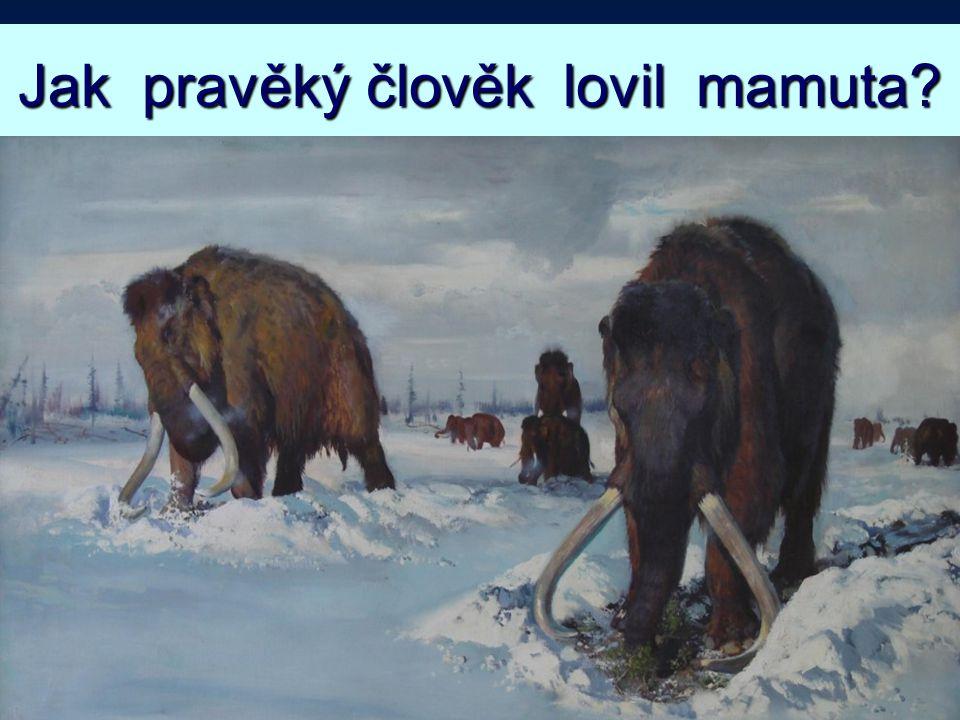 Jak pravěký člověk lovil mamuta