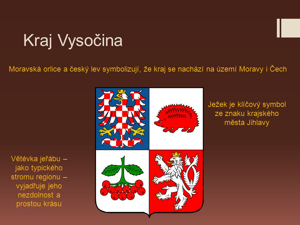 Ježek je klíčový symbol ze znaku krajského města Jihlavy