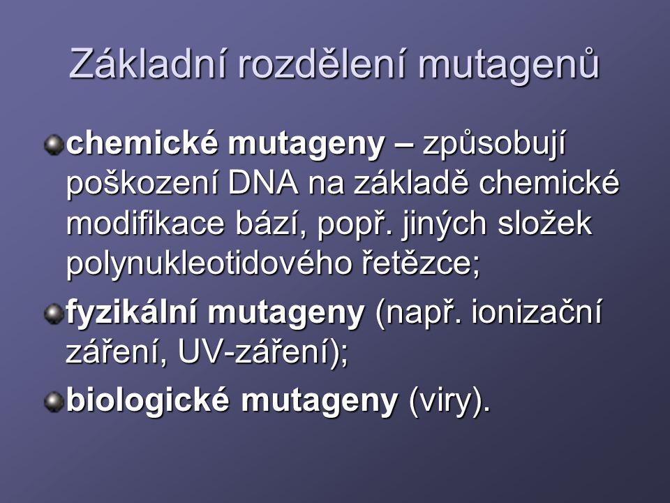Základní rozdělení mutagenů