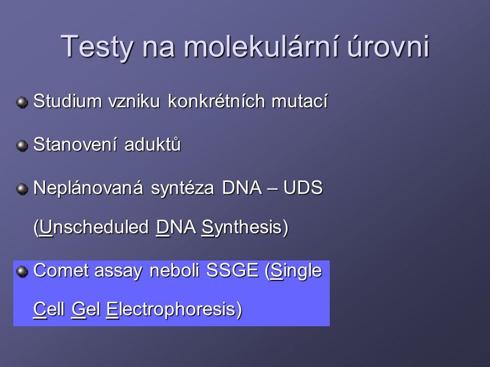 Testy na molekulární úrovni