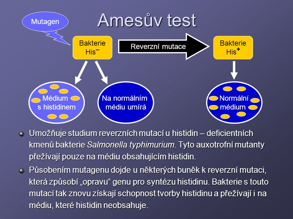 Amesův test Mutagen. Bakterie. His+ Reverzní mutace. Bakterie. His– Normální. médium. Médium.