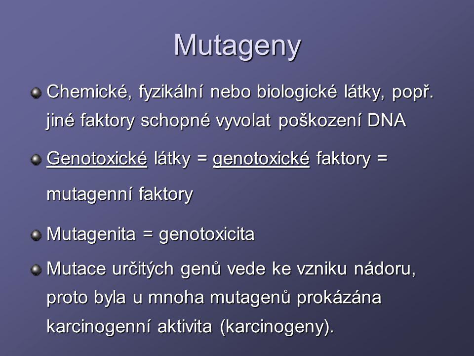 Mutageny Chemické, fyzikální nebo biologické látky, popř. jiné faktory schopné vyvolat poškození DNA.