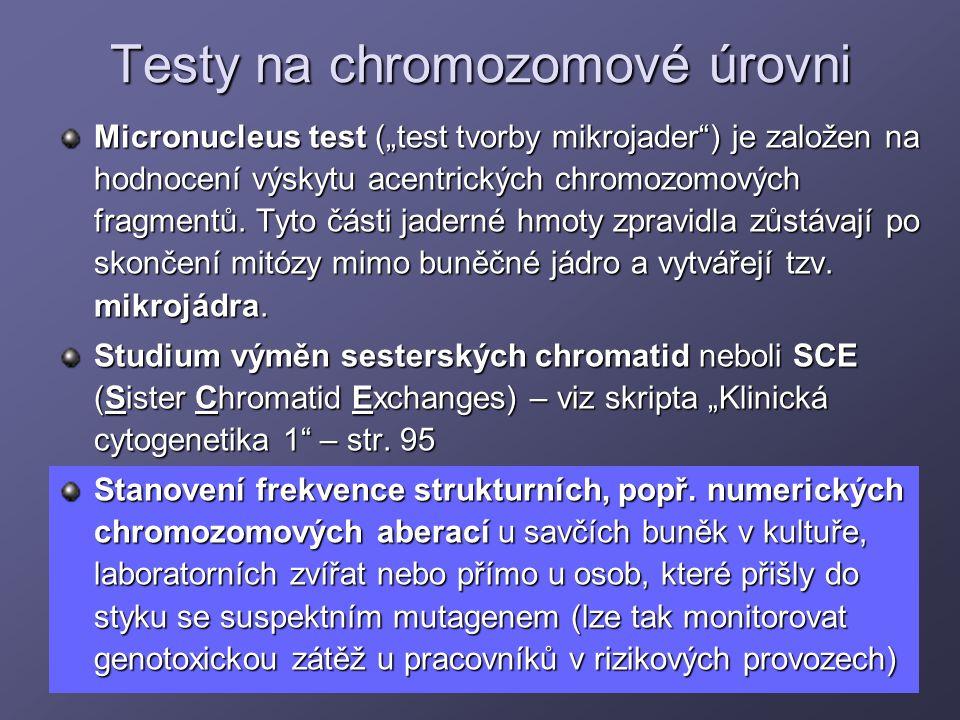Testy na chromozomové úrovni