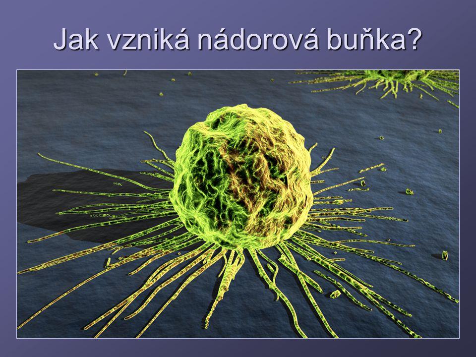 Jak vzniká nádorová buňka