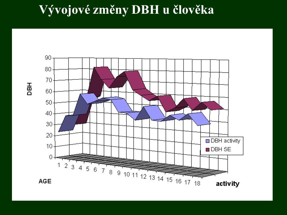 Vývojové změny DBH u člověka