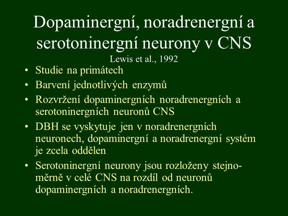 Dopaminergní, noradrenergní a serotoninergní neurony v CNS Lewis et al