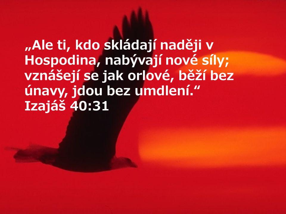 """""""Ale ti, kdo skládají naději v Hospodina, nabývají nové síly; vznášejí se jak orlové, běží bez únavy, jdou bez umdlení. Izajáš 40:31"""
