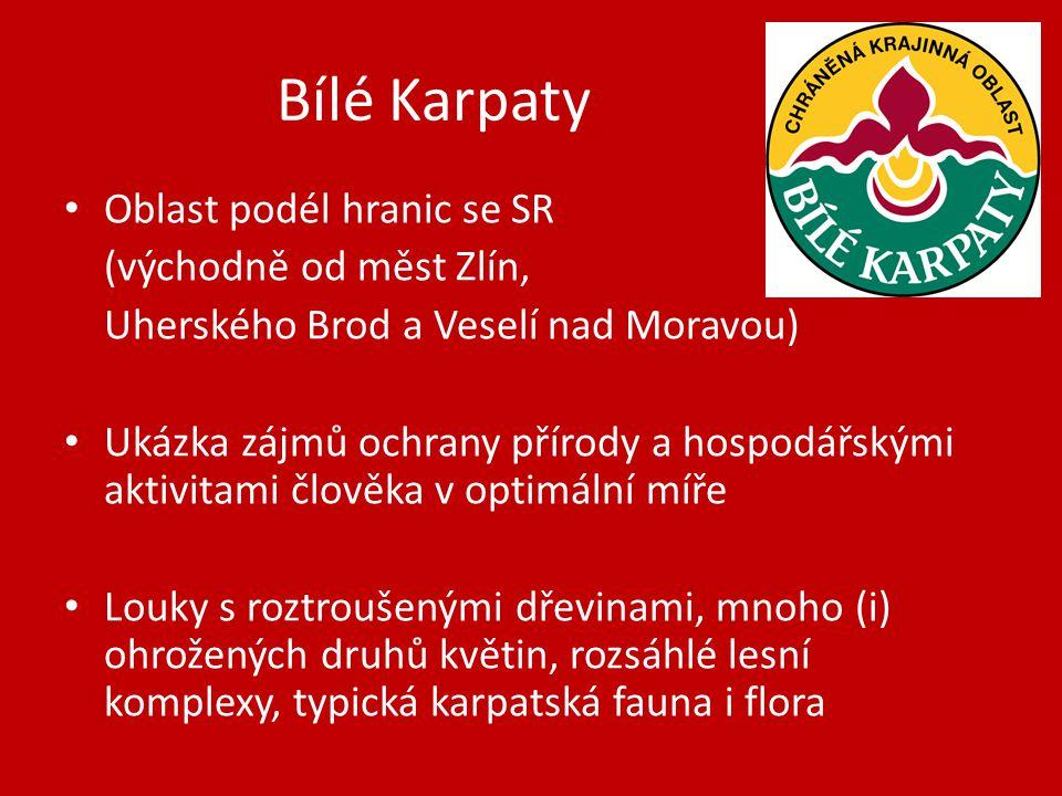 Bílé Karpaty Oblast podél hranic se SR (východně od měst Zlín,