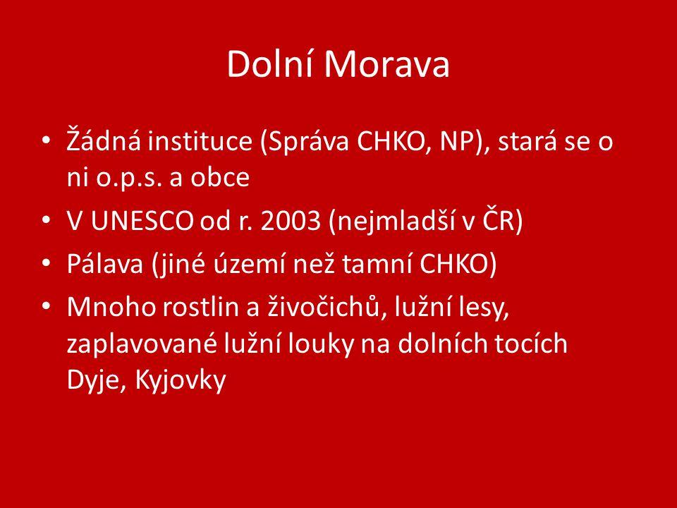 Dolní Morava Žádná instituce (Správa CHKO, NP), stará se o ni o.p.s. a obce. V UNESCO od r. 2003 (nejmladší v ČR)