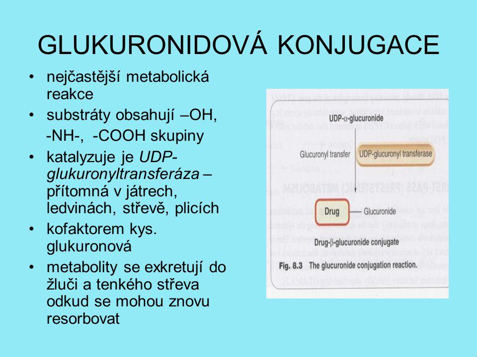 GLUKURONIDOVÁ KONJUGACE