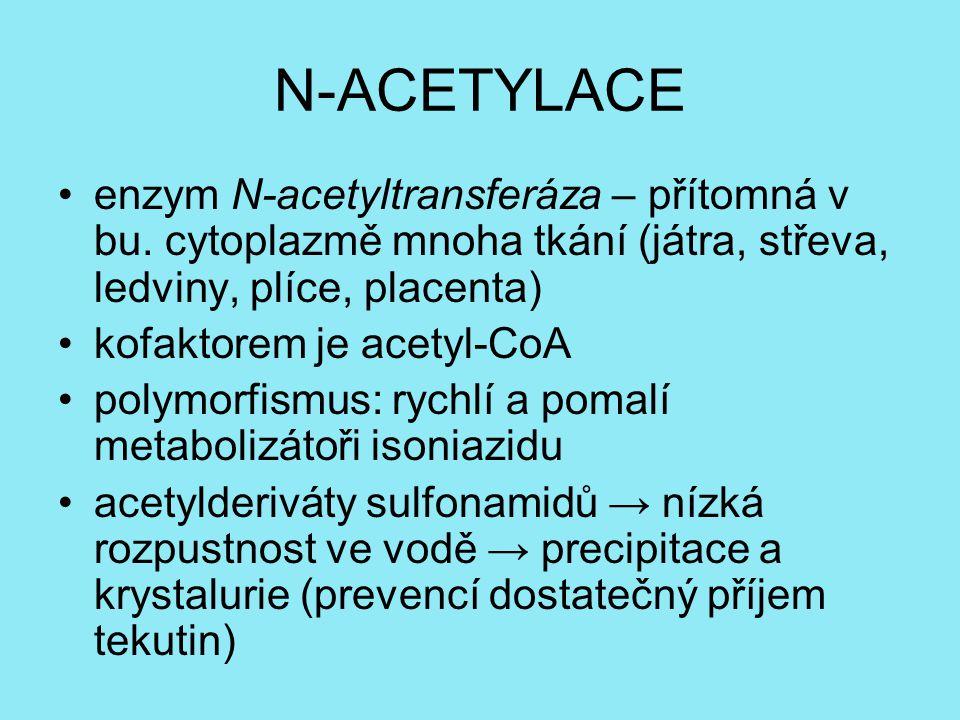 N-ACETYLACE enzym N-acetyltransferáza – přítomná v bu. cytoplazmě mnoha tkání (játra, střeva, ledviny, plíce, placenta)