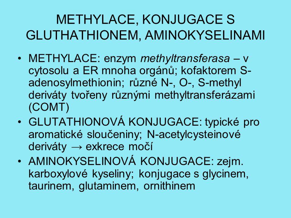 METHYLACE, KONJUGACE S GLUTHATHIONEM, AMINOKYSELINAMI