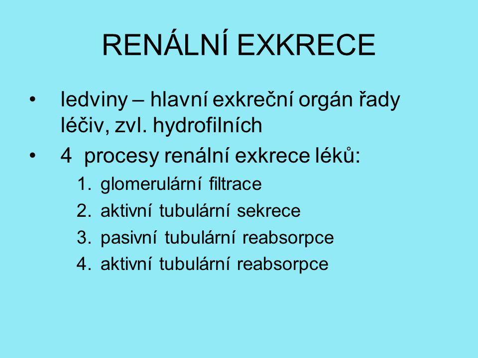 RENÁLNÍ EXKRECE ledviny – hlavní exkreční orgán řady léčiv, zvl. hydrofilních. 4 procesy renální exkrece léků: