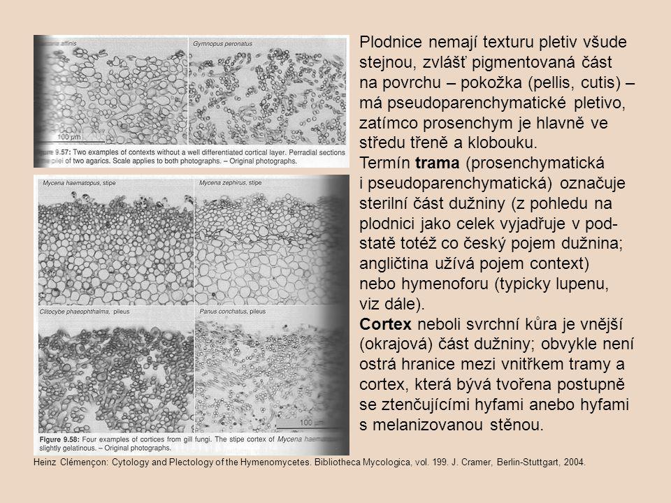 Plodnice nemají texturu pletiv všude stejnou, zvlášť pigmentovaná část na povrchu – pokožka (pellis, cutis) – má pseudoparenchymatické pletivo, zatímco prosenchym je hlavně ve středu třeně a klobouku.