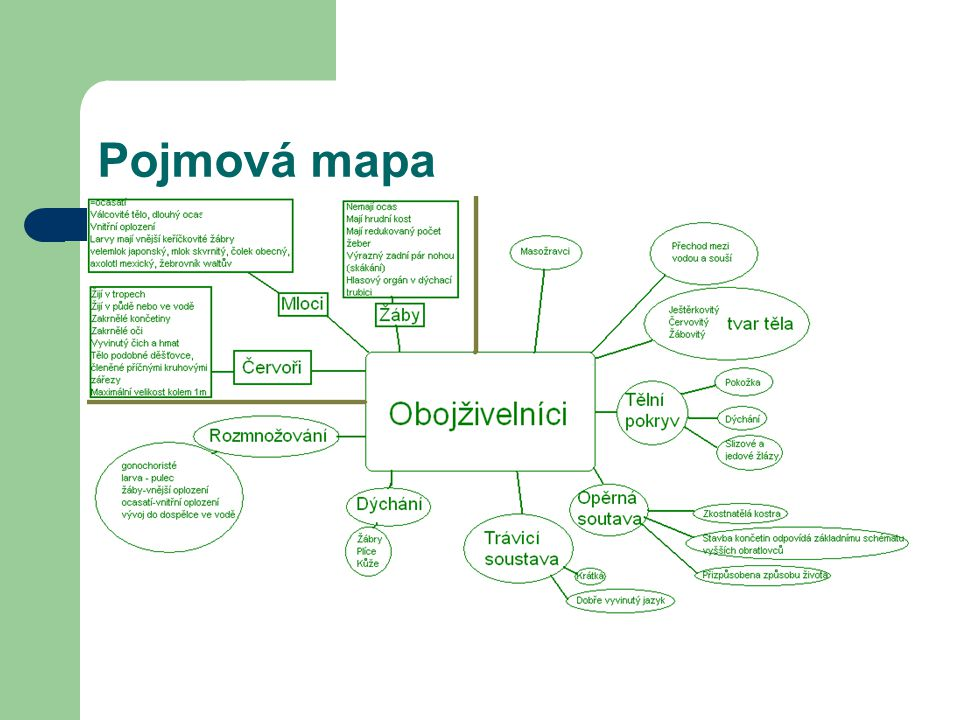 Pojmová mapa