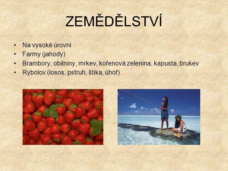 ZEMĚDĚLSTVÍ Na vysoké úrovni Farmy (jahody)
