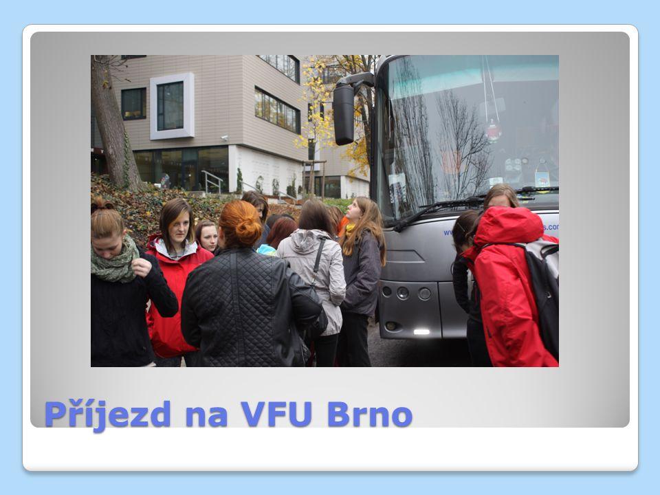 Příjezd na VFU Brno